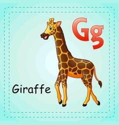 animals alphabet g is for giraffe vector image
