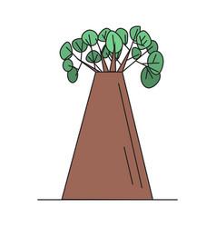 baobab tree on white background vector image