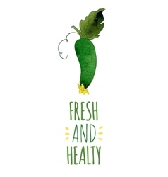 Fresh and healty cucumber vector image