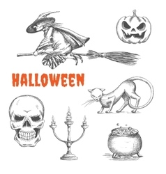 Halloween decoration symbols in pencil sketch vector