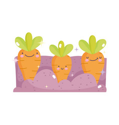 kawaii gardening cartoon happy planted carrots vector image