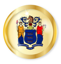 new jersey flag button vector image