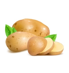 Potatoes with slices and leaves vector
