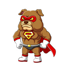Super bulldog with serious and angry face vector