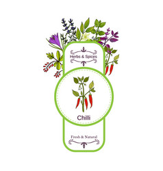 Vintage herbs and spices label collection cayenne vector