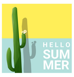 hello summer background with cactus vector image vector image