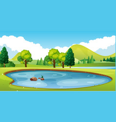 scene with pond in the field vector image vector image