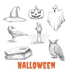 sketched elements of Halloween celebration vector image