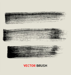 dry brush stroke texture collection vector image