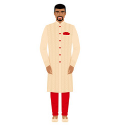 indian man in traditional costume vector image