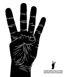 Numbers hand signs set number four detailed black vector image
