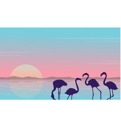 collection stock of flamingo silhouette scenery vector image vector image