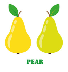 Pear isolated object vector