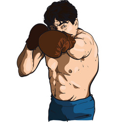 Boxing man vector