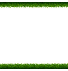 grass frame isolated vector image