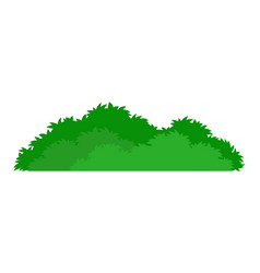 green stylized bush icon vector image