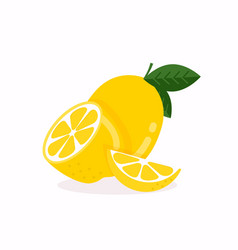 lemon fruit with leaf isolated on white background vector image