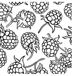 raspberry berries pattern vector image