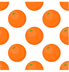 Seamless background of oranges on a white vector