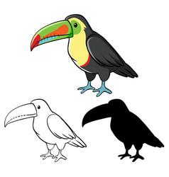 Set toucan cartoon vector