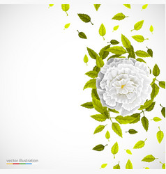 white flower and leafs on bright background vector image