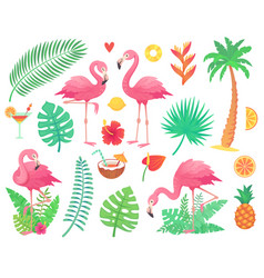 Pink flamingo and tropical plants beach palm vector