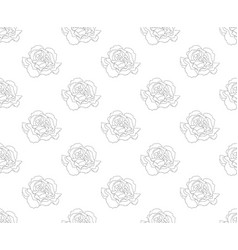 carnation seamless on white background vector image vector image