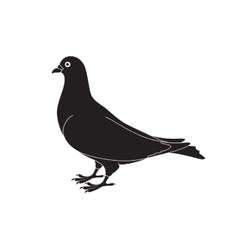 Beautiful silhouette of a dove vector image vector image