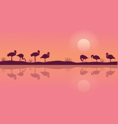 flamingo on riverbank scene silhouette collection vector image vector image
