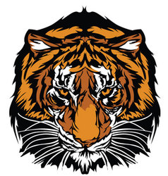 tiger head graphic mascot vector image vector image