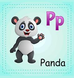 animals alphabet p is for panda vector image