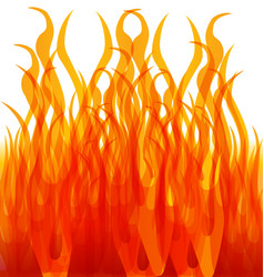 Burning fire flames vector