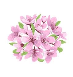 Cherry blossom bouquet vector