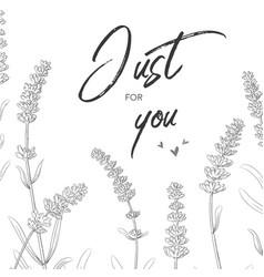 Floral card design with lavender garden provence vector