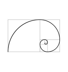 Golden ratio proportion spiral section vector