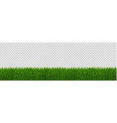 green grass border transparent background vector image