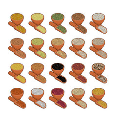 Groats in wooden bowl and spoon set rice and vector