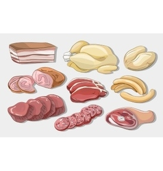 Different kinds of meat collection vector image