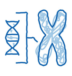 chromosome and molecule doodle icon hand drawn vector image