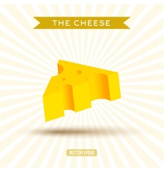 Delicious bulk cheese on a white background with vector