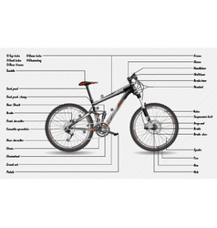 Full suspension MTB scheme vector
