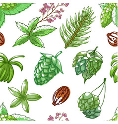 hops seamless pattern on white vector image