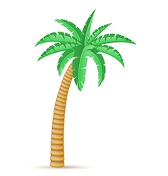 palm 03 vector image