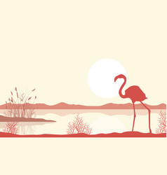 Silhouette of flamingo on lake landscape vector