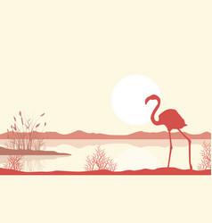 Silhouette of flamingo on lake landscape vector