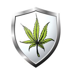 Web button or icon with marijuana leaf vector