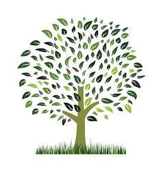 green grass ans tree vector image