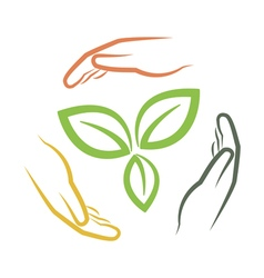 hands around green leaves vector image vector image