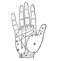 Palmistry discover the temperament vintage vector