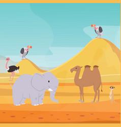 africa desert landscape background with cartoon vector image